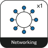 Present Through the Network